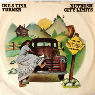 "Ike & Tina Turner - Nutbush City Limits (12"") (VG-/G)"